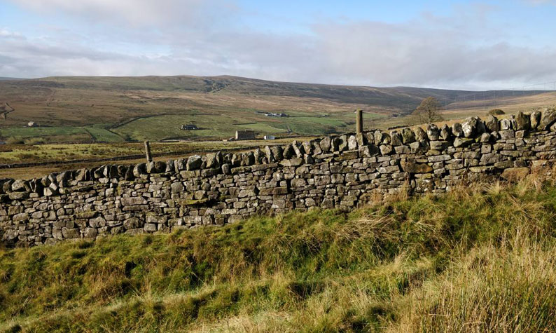 Lanehead, Weardale. Looking towards Wellhope