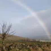 Rainbow over Northumberland
